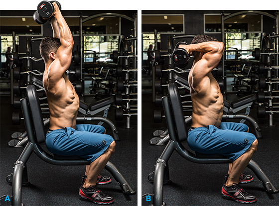 8-effective-arms-exercises-you-have-to-try-2