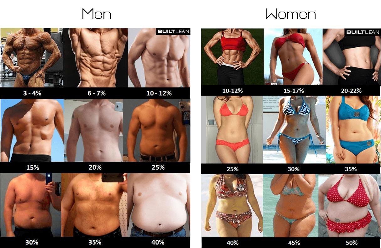 body-fat-percentage-men-women-min