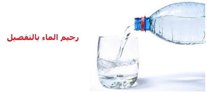 5 نماذج لرجيم الماء للتخسيس السريع و فاعليتهم و اضرارهم 2