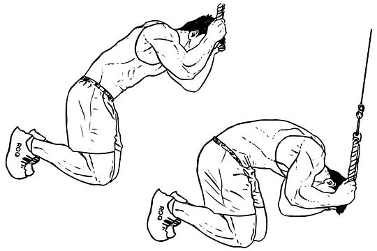 تمرين بطن