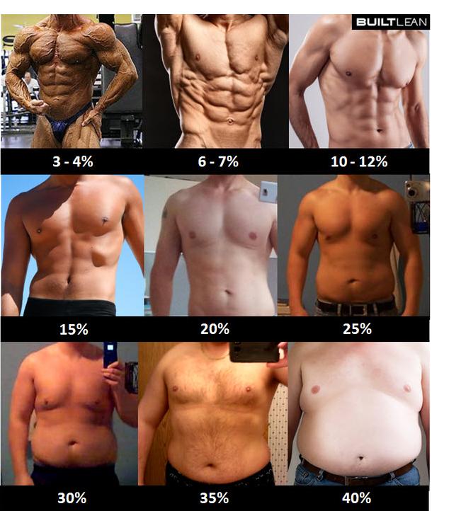 نسبة الدهون بالرجال