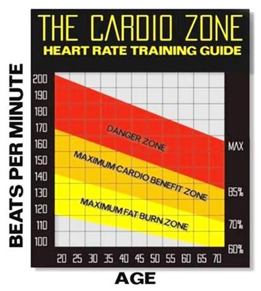 تمارين الكارديو بشدة منخفضة لحرق نسبة اكبر من الدهون. هل هذا حقيقي ؟ 1