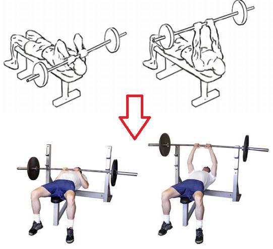 افضل طريقة لاداء تمارين السوبر ست للضخامة العضلية 1