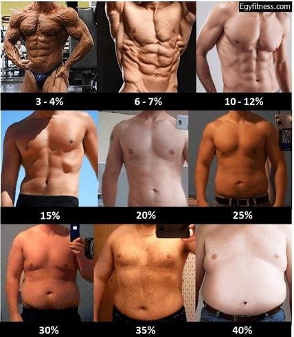 نسبة الدهون رجال