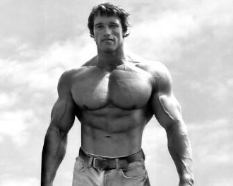 40-Insane-Arnold-Schwarzenegger-Bodybuilding-Pictures5-600x480