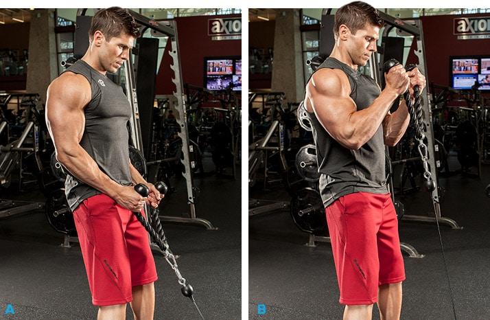 كيف تختار أول وزن لتمرينك الجديد وأضرارالتدريب حتي الإخفاق 2
