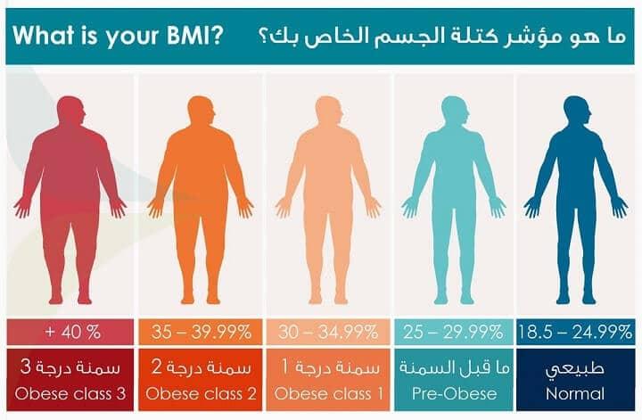 حساب الوزن المثالي مؤشر كتلة الجسم نسبة الدهون والماء والعضلات Egyfitness