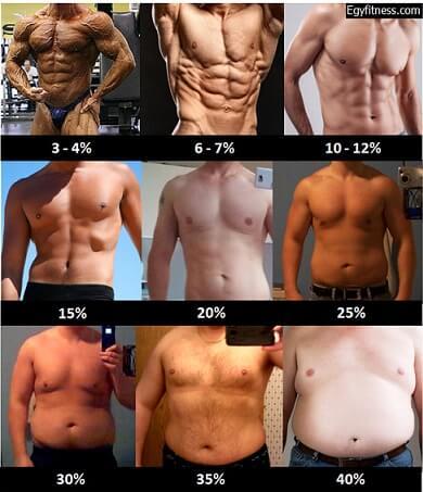 نسبة الدهون المثالية للرجل