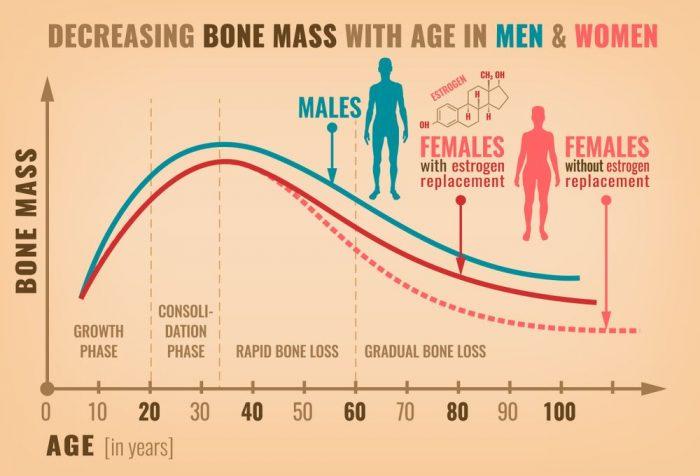 Bone Mass Density